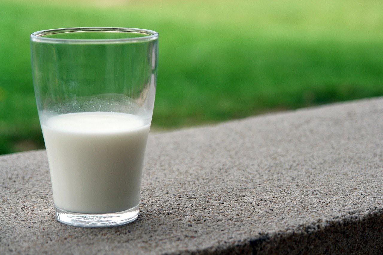 ¿Qué es la lactosa y para qué sirve este componente de la leche?